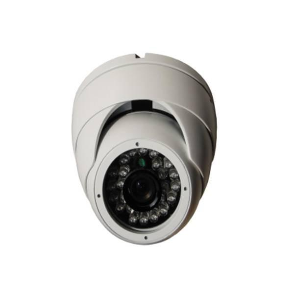 FIXED LENS 24LED EYE BALL DOME IP CAMERA 14SGH