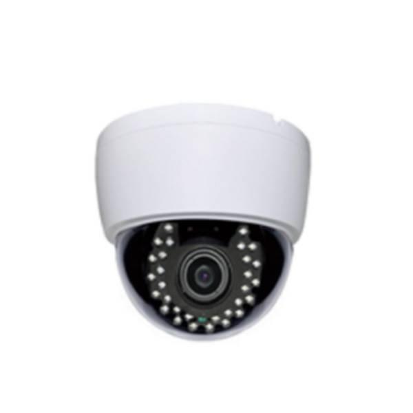 AF LENS 30LED DOME  IP CAMERA B103